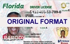 FLORIDA  DRIVER LICENSE FLORIDA FAKE ID CARD SCANNABLEFLORIDA FAKE ID