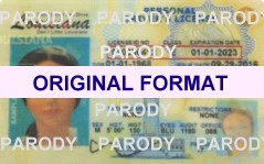 Louisiana DRIVER LICENSE ORIGINAL FORMAT, DESIGN SPECIFICATIONS, NOVELTY SECURITY CARD PROFILES, IDENTITY, NEW SOFTWARE ID SOFTWARE Louisiana driver