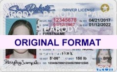 SOUTH DAKOTA FAKE IDS SCANNABLE FAKE SOUTH DAKOTA ID WITH HOLOGRAMS
